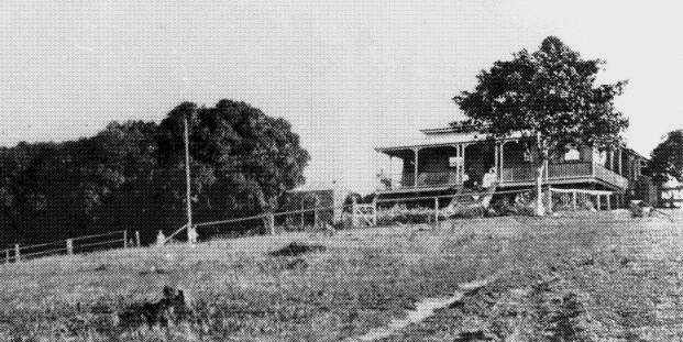 The First Settlers of the Nambour Area